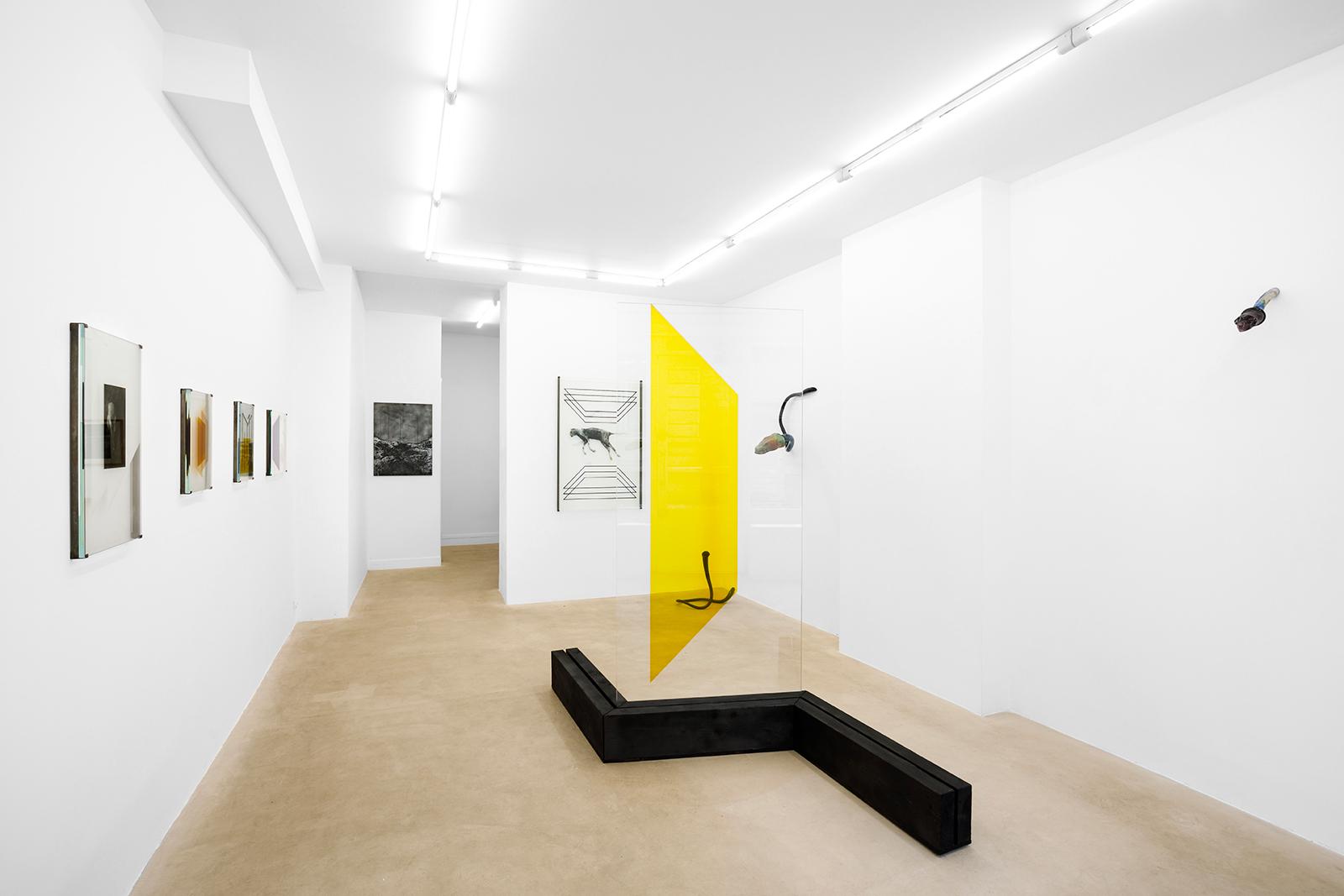 En images : Pia Rondé & Fabien Saleil à la galerie Valeria Cetraro