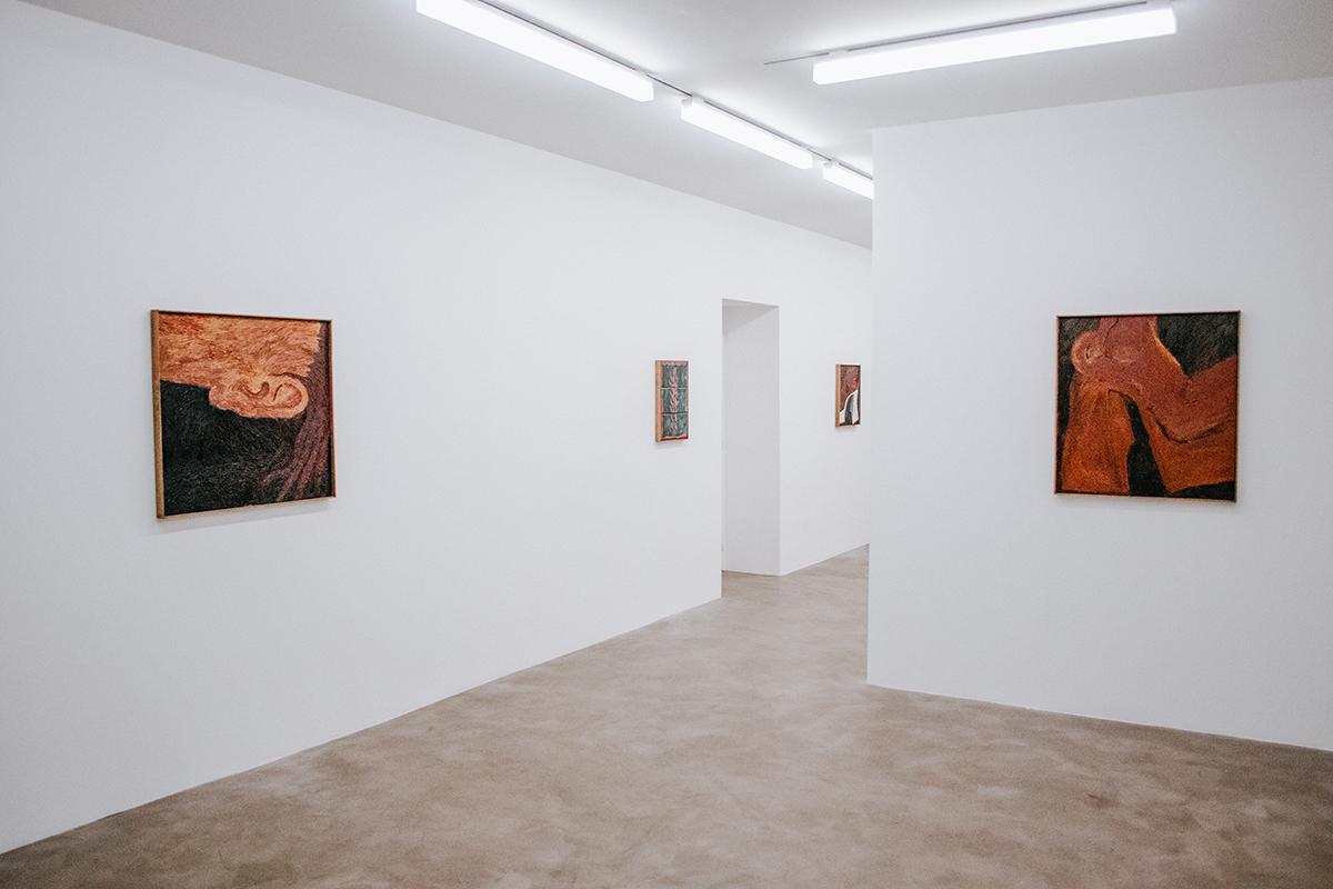 En images : Stevie Dix à la galerie Chloé Salgado